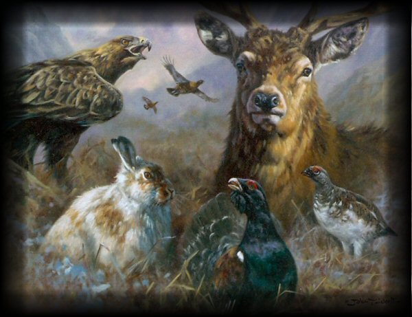 Wildlife has always inspired art and our list of wildlife artists